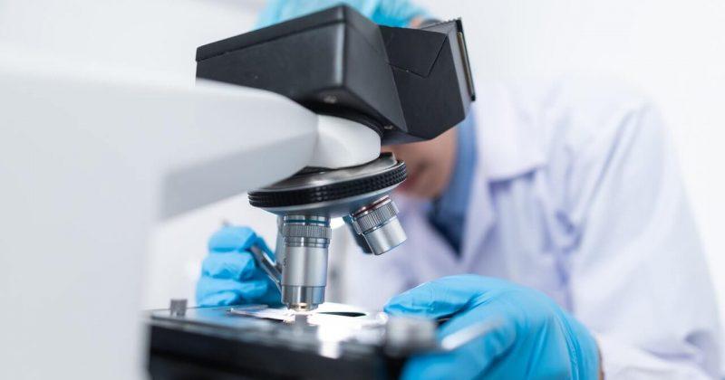 הקשר בין תרופות להורדת כולסטרול ותופעות הלוואי שלהם